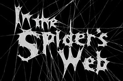 AMAZING SPIDER'S WEB
