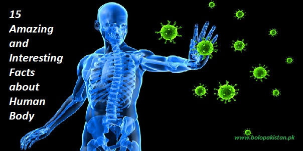 Amazing and interesting facts about human body bolopakistan